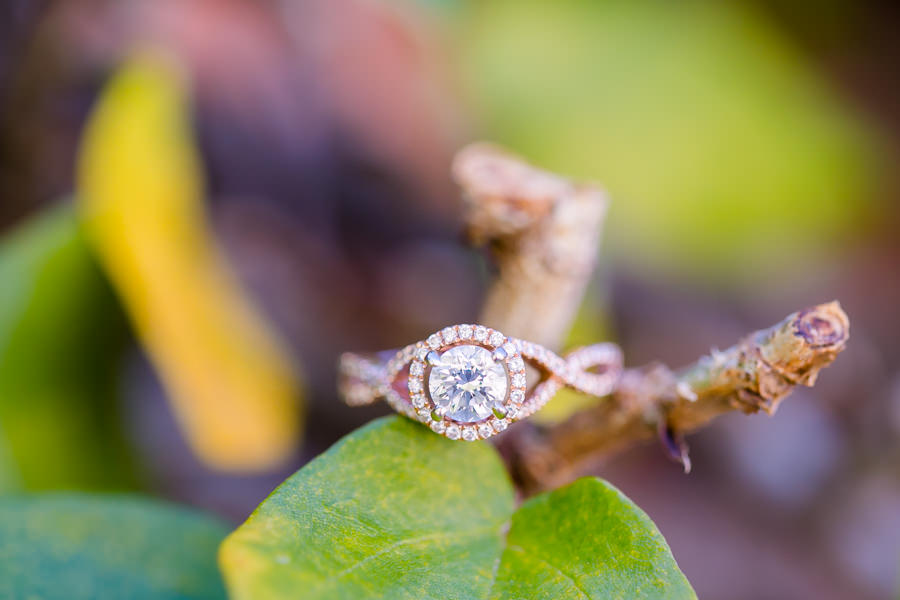 photo of diamond engagement ring   vizcaya museum and gardens engagement session