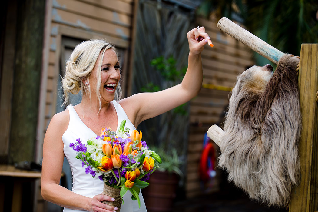 bride feeds animal during her wedding at palm beach zoo | palm beach zoo wedding photographer