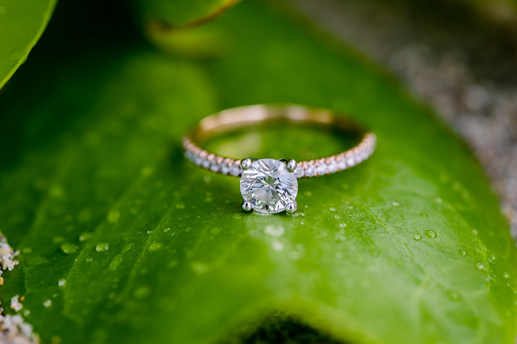 rose gold and diamond engagement ring detail photo on green leaf | engagement ring photo on the beach
